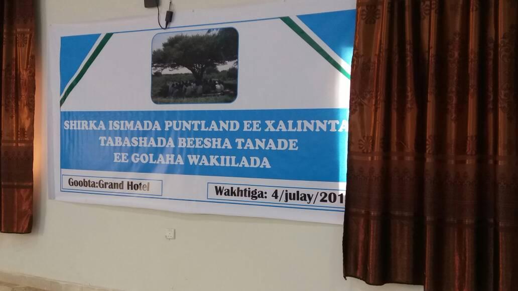 """War Murtiyeed Beesha Tanade: """"Siyaasiyiinta Beesha Majeerteen baa na Dulmiyey, Siyaasaduna u Afduubantahay"""" (dhegayso)"""