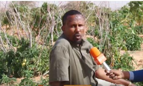 Somaliland: Wasiir hore oo Beeralay isu badalay, badalkii fadhi ku dirirka