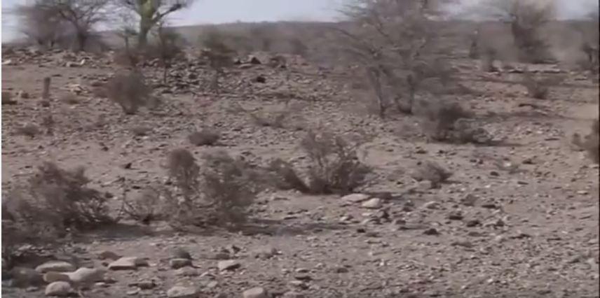 Abaaro ba'an baa kajira qaybo kamid ah Puntland (Daawo)