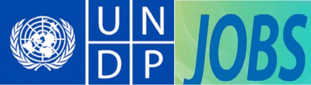 Garoowe: Fursad Shaqo UNDP – Kalkaaliye ICT