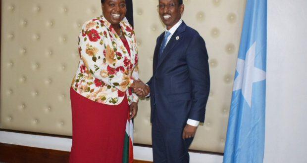 Wasiirka Arrimaha dibadda DFS oo la kulmay Wasiirka Arrimaha Dibadda Kenya