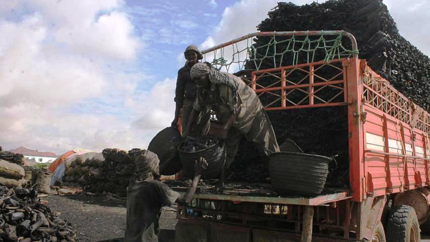 The UAE still supports al-Shabaab through Somalia's illicit charcoal trade
