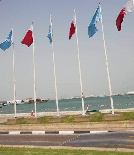 Horn of Africa Caught in Between the Qatar-GCC Crisis: Case Studies of Somalia and Sudan