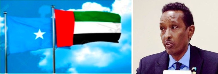 The Federal government will work with the UAE on utilization of intercepted funds (MFA Press Release)