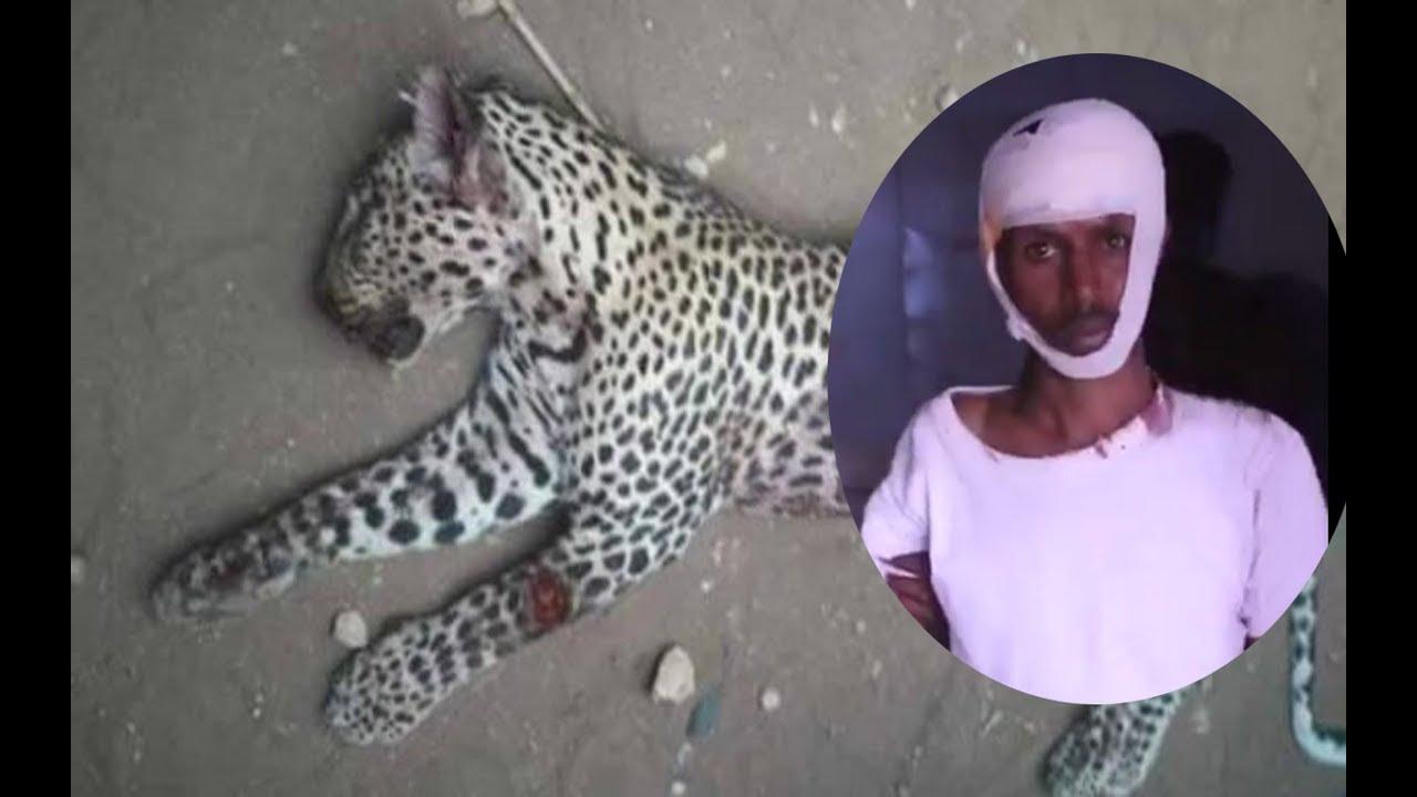 Xaaladda dad Shabeel uu ku dhaawacay duleedka magaalada Buuhoodle (dhegayso)