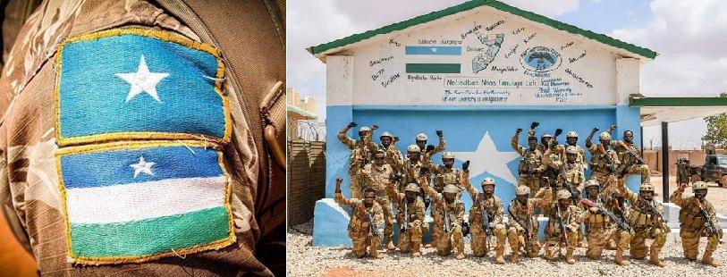 Maxaad ka taqaan ciidamada 'Puntland Security Force (PSF)' ee Mareykanku maalgaliyo? (dhegayso)