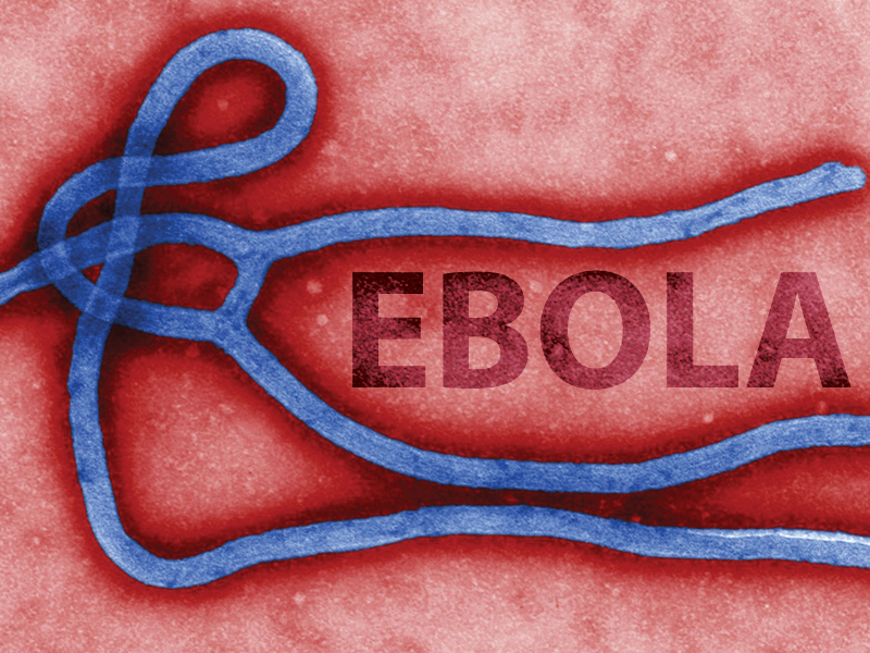 Maxaad ka ogtahay halista cudurka Ebola? (Daawo)
