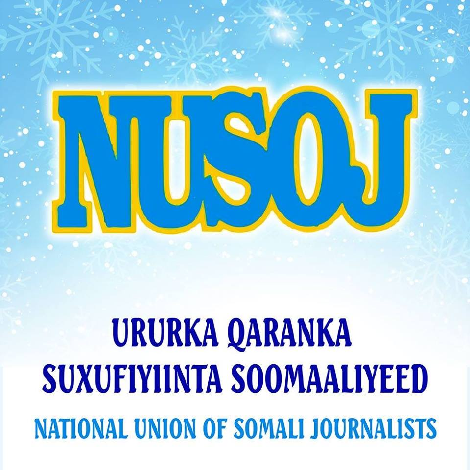 Puntland frees detained journalist following coerced confession