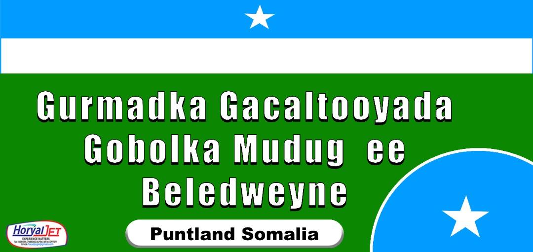 Gurmad Baladweyne oo maanta Gaalkacyo ka ambabaxay  (Sawiro)