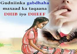 PUNTLAND: Dooda ka taagan sharciga gudniinka gabdhaha (daawo)