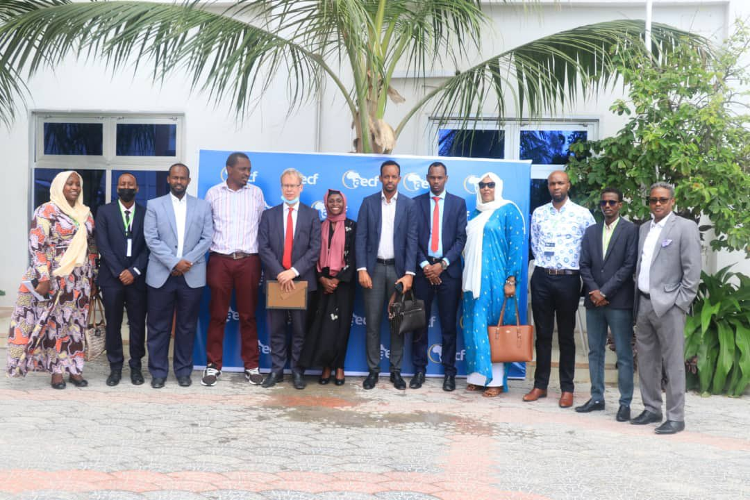 aecf PR: Renewable energy businesses in Somalia to get financial and technical assistance
